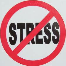 No Stress image