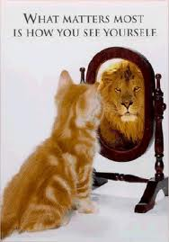 What matters most is how you see yourself - Lion